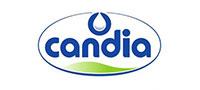 client-candia